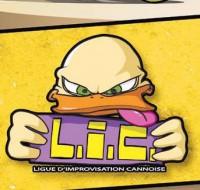 logo lic (800x508)